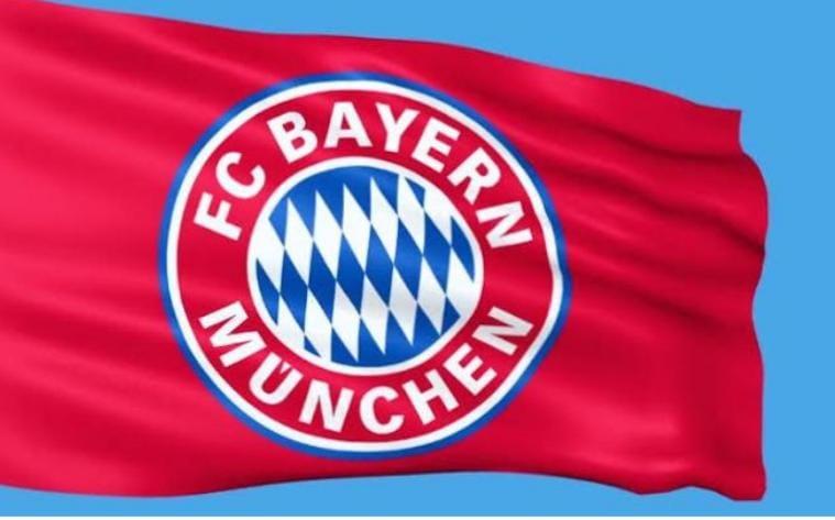 ميونخ - بايرن ميونيخ بطلاً للدوري الألماني بعد خسارة لايبزيغ