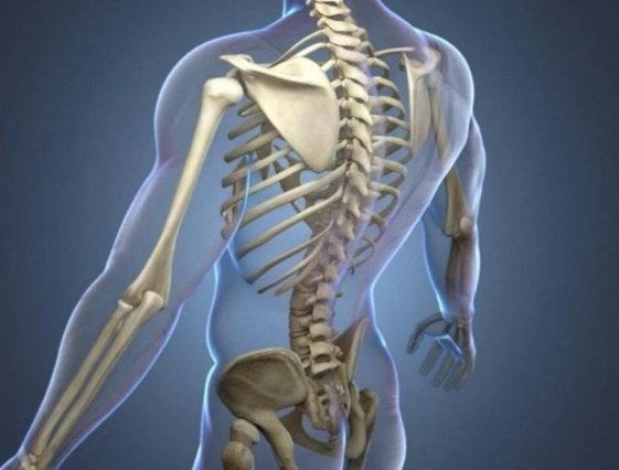 195753780 189489213086298 6392736551124278677 n 1 - تعرف على أبرز أعراض سرطان العظام