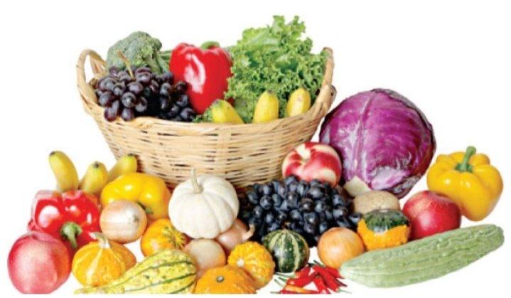 195786133 190037963031423 1633292045471841723 n - تناول الفاكهة والخضار يقلل خطر الإصابة بسرطان الرئة