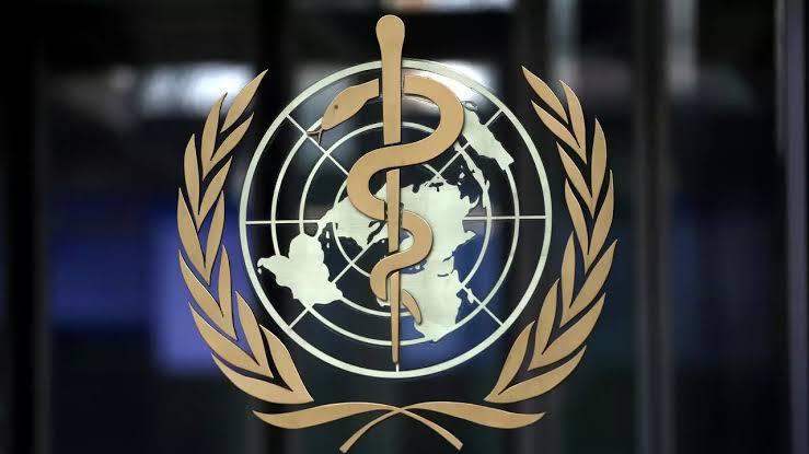 A060DDD3 9E79 4EEB 8F5D 8D8B9B36B797 - الصحة العالمية: مصر أول دولة في العالم تتقدم للمنظمة للحصول على الاشهاد الدولي للخلو من فيروس سي